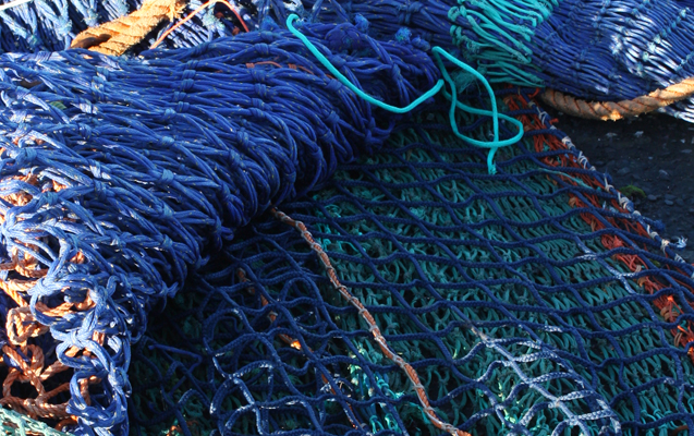 Danish netting project